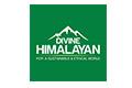 Divine Himalayan